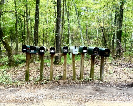 Rural mailboxes on a country road
