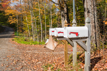 Row of mailboxes along an unpaved forest road in the countryside on a sunny autumn morning....