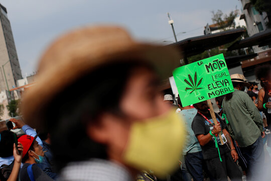 Pro-cannabis activists take part in a demonstration against the use of sniffer dogs inside the metro in Mexico City
