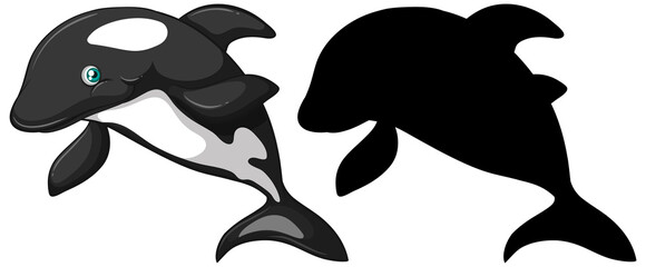 Printed kitchen splashbacks Kids Killer whale characters and its silhouette on white background