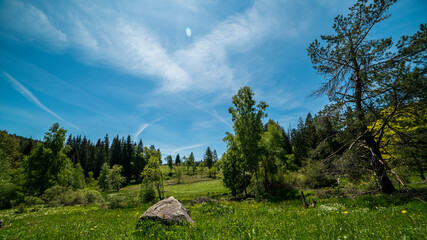 Germany, Black Forest Schwarzwald, Green untouched nature landscape of pastures and rocks with blue sky