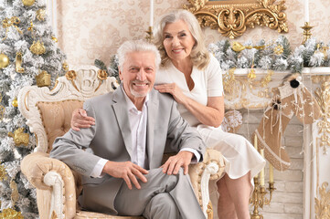 Happy senior couple sitting in armchair in room