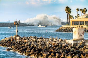 Dramatic wave crashing at the breakwater