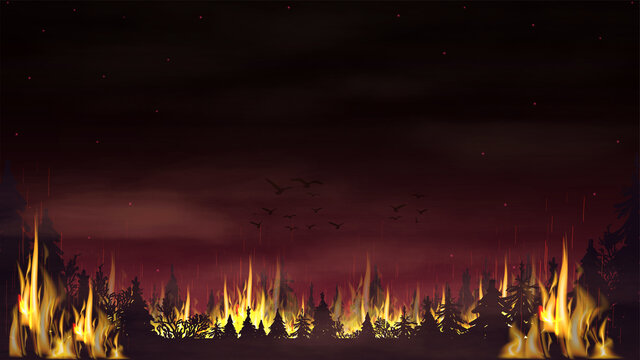 A forest fire with a red smoky sky. Vector landscape with burning spruce forest