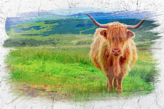 Brown highland cow in Isle of Skye, Scotland, watercolor painting
