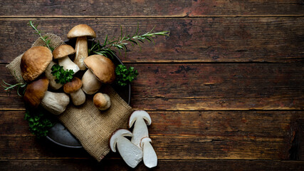 Fototapeta Fresh forest mushrooms /Boletus edulis (king bolete) / penny bun / cep / porcini / mushroom in an old bowl / plate and rosemary parsley herbs on the wooden dark brown table, top view background obraz