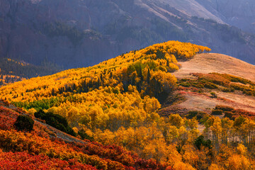 Autumn landscape in the mountains