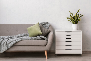 Modern chest of drawers with sofa and houseplant near light wall in room