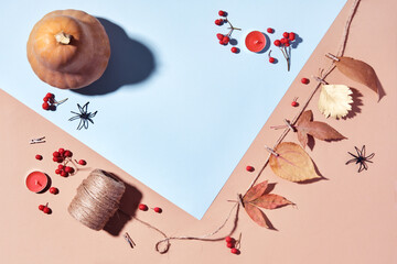 Autumn layout with pumpkins, diy garland and berries in pastel colors, copy space