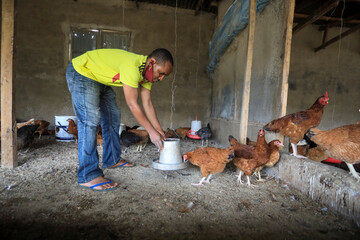 A farmer checks the feeders in his poultry farm in Kubwa Abuja