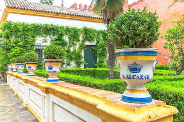 Seville, Andalusia, Spain - April 19, 2016: ceramic pot vase in hedge maze decorates garden of Royal Alcazars of Seville or Reales Alcazares, oldest royal palace in use in Europe, UNESCO Heritage Site