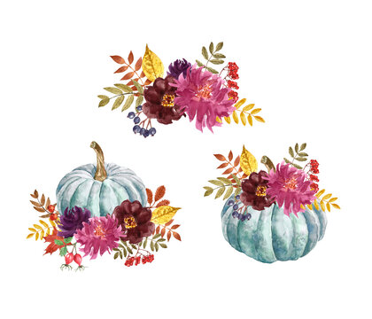 Fall pumpkin arrangements set. Watercolor beautiful floral autumn bouquets, isolated. Blue pumpkins and burgundy and purple flowers. Hand painted illustration in boho style
