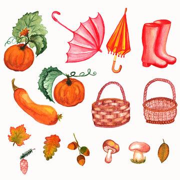 Watercolor Clipart autumn elements PNG file autumn leaves