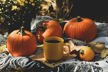Cozy autumn concept with pumpkins and cup of coffee outdoor
