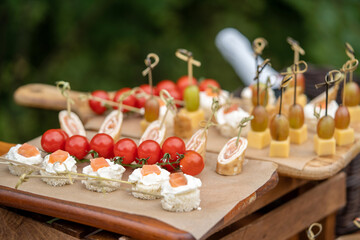 A set of canapes for a snack at a banquet, slices of tomato grapes cheese and fish on wooden boards.