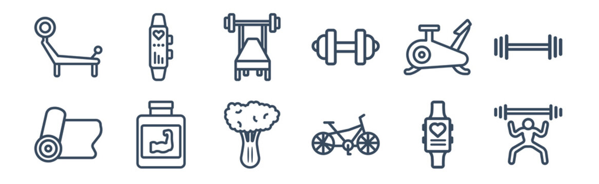 12 pack of icons. thin outline icons such as lifting barbell, riding bicycle, phytonutrients, exercise bike, barbell bench press, sport watch for web and mobile apps, logo