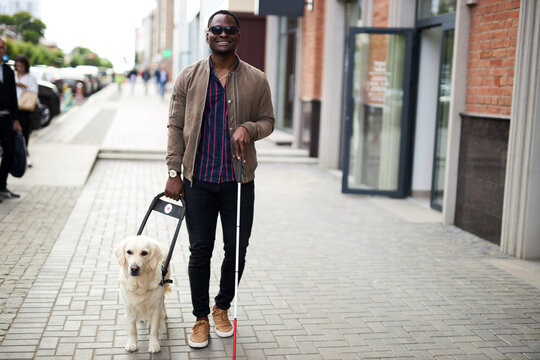 african american disabled man with helpful dog, dark skinned guy walking with friendly dog golden retriever