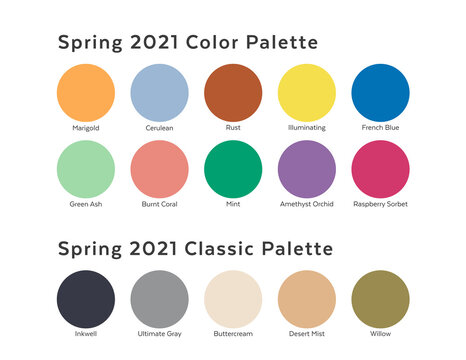 Spring / Summer 2021 Color Palette Example. Future Color Trend Forecast. Saturated and Classic Neutral Color Samples Set. Palette Guide with Named Color Swatches Included in EPS File. Letter format.