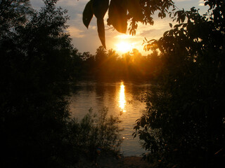 Beautiful tree autumn sunset reflection in water.Natural sunrise landscape.   black silhouettes of...