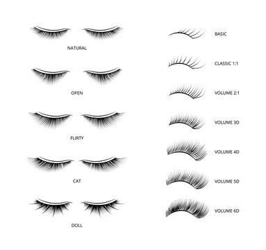 Banner with kinds of false lashes for extension vector illustration isolated.