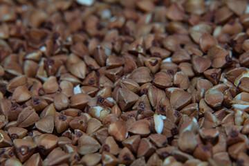 buckwheat background, pattern, texture, wallpaper