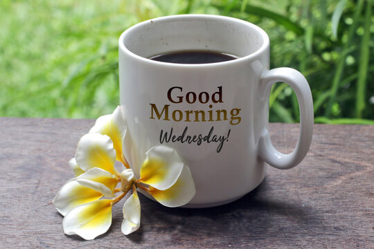 A cup of coffee with Bali frangipani flower on the wooden table with morning text greeting on it - Good morning Wednesday, on green garden background. Morning coffee. Wednesday coffee concept.