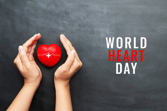 World heart day concept of young woman hand protecting red heart on black background