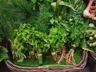 Mint leaf Coriander Dill Organic vegetable in basket Asian Local market