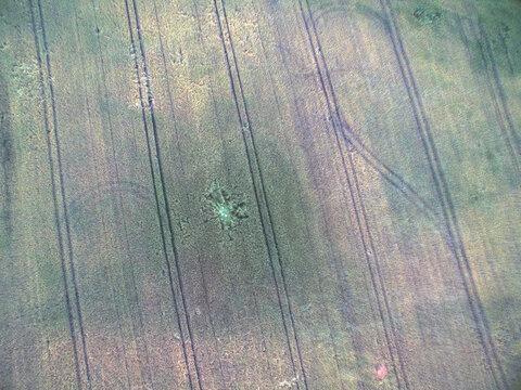 acker landwirtshcat feld mit drohne luftbild wildschaden wildschweine
