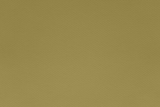 Texture of willow khaki colored paper for watercolor and pastel. Fashionable pantone color of spring-summer 2021 season from fashion week. Modern luxury background or mock up, copy space