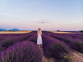 Anonymous woman in summer wear admiring landscape at lavender fields