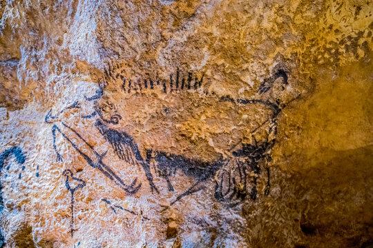 La Grotte de Lascaux IV