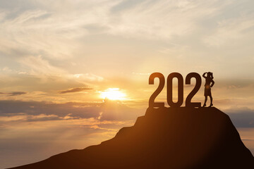 New Year 2021 and business development. Wall mural