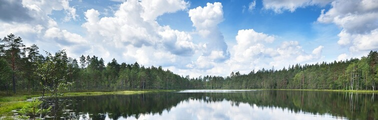 Blue Saimaa lake, evergreen forest, Finland. Picturesque panoramic scenery. Reflections in the water. Atmospheric landscape. Pure nature, ecology, environmental conservation, travel destinations