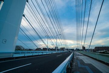 近代的な鉄の吊り橋とワイヤー