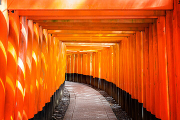 Fushimi Inari Shrine, with a walkway of many Torii Gates. Ktoto, Japan.
