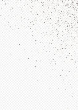 White Sequin Holiday Transparent Background.