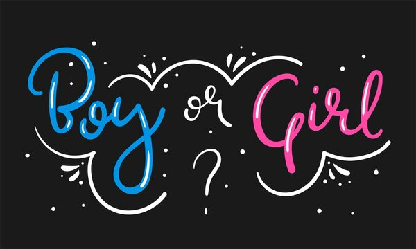 Boy or girl hand drawn modern lettering - Baby shower announcement banner, card - Gender reveal party - Vector illustration isolated