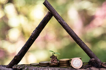 coins under the protection of a wooden roof as a symbol of growth and protection of income