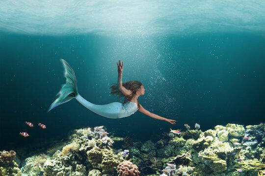 Underwater Mermaid Swimming Among Ocean Coral Reef