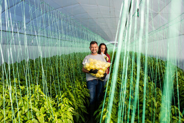 Two middle-aged farmers working together in a greenhouse, they carry a bag of peppers in their hands.