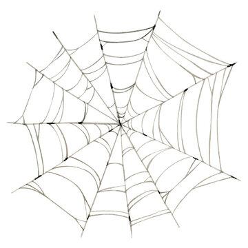 Watercolor spooky spiderweb clipart illustration