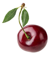 Fototapete - Cherry isolated on white backgroundd