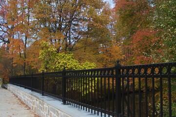 Fall Foliage Bridge Railing