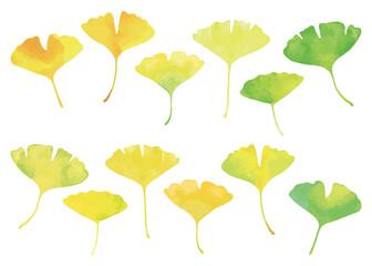 イチョウの葉セット 水彩画 緑から黄色に色づくグラデーション Wall mural