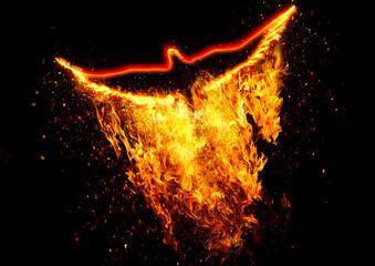 羽ばたく火の鳥
