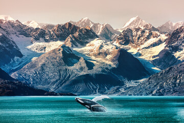 Alaska whale watching boat excursion. Inside passage mountain range landscape luxury travel cruise concept.