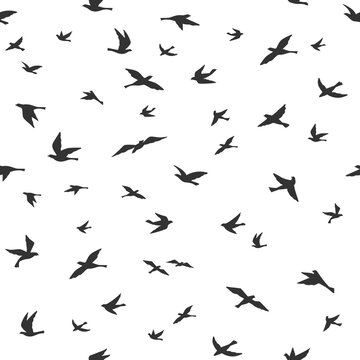 Flying bird seamless pattern. Drawing birds flock flying, abstract aerial black silhouettes in sky, print textile, wallpaper vector texture. Doves or pigeons migration, animal wildlife