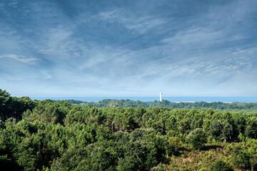 Photo sur Plexiglas Bleu jean landscape of south west France with the Messanges semaphore on the horizon