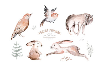 Woodland animals set. Owl, hedgehog, fox and butterfly, Bunny rabbit set of forest squirrel and chipmunk, bear and bird baby animal, Scandinavian Nursery wolf watercolor kids poster design